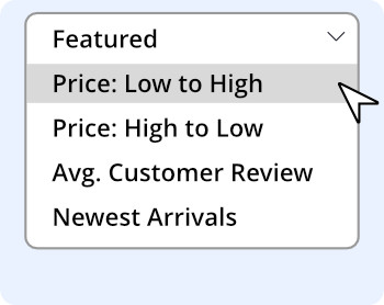 faceted filter example: by price(low-high,high-low),average customer review and newest products