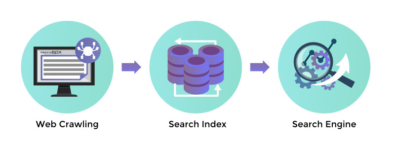 What is a Search Index > Web Crawling > Search Index > Search Engine